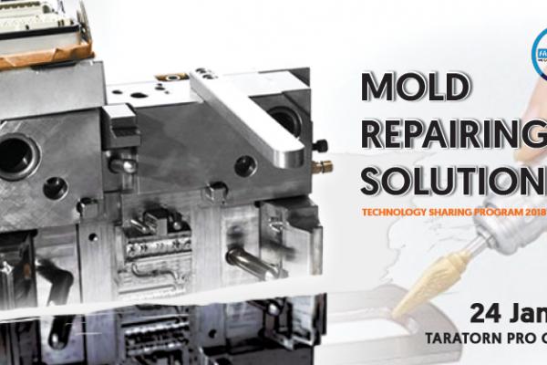 mold_repair